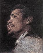 Head Study of a Young Moor dhyj CRAYER, Gaspard de