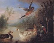 Waterfowl in a Landscape Marmaduke Cradock