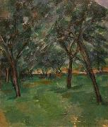 A Close Paul Cezanne