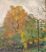 Deciduous trees in fall suit with cuts Bernhard Folkestad