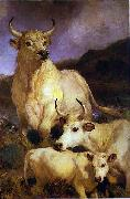 The wild cattle of Chillingham, 1867 Sir edwin henry landseer,R.A.