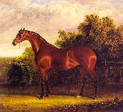 Negotiator the Bay Horse in a Landscape Herring, John F. Sr.
