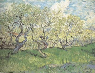 Vincent Van Gogh Orchard in Blossom (nn04)